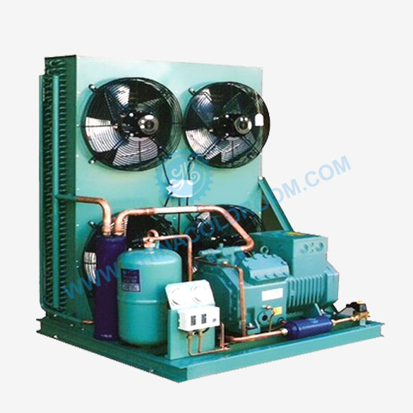 Bitzer Compressor Unit for Low Temperature Cold Storage