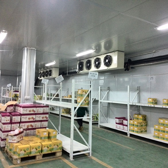 Temperature and humidity of small cold storage